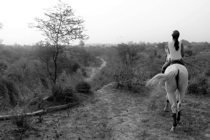 Aravilli Trails- Horseback Riding photo 4