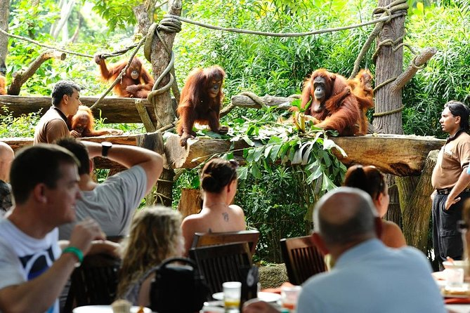 Singapore Zoo & Jungle Breakfast With Private 2 way Transfers for 1 to 6 people