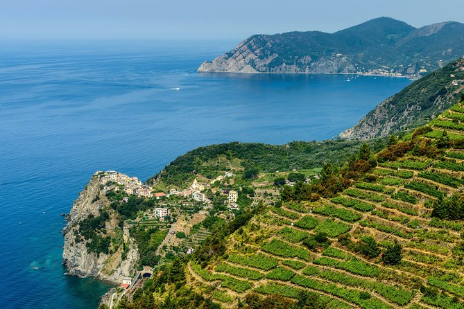Shore Excursion from Livorno Port: Private Full day Tour Cinque Terre and Pisa
