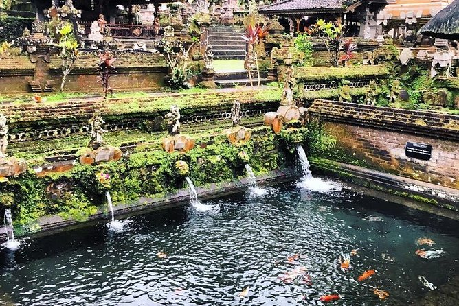 The best Ubud tour and fun activities in Bali photo 7
