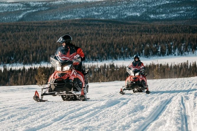 Snowmobile Safari to Husky Farm from Saariselkä