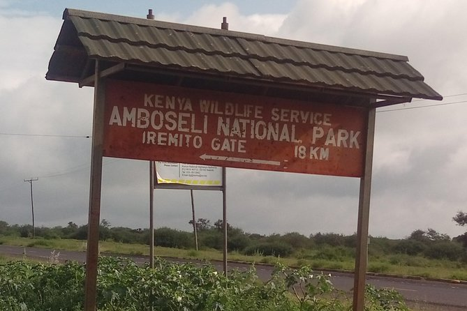 Amboseli Day Safari