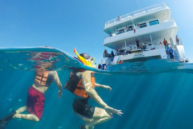 Snorkeling tour in Cabo San Lucas photo 1
