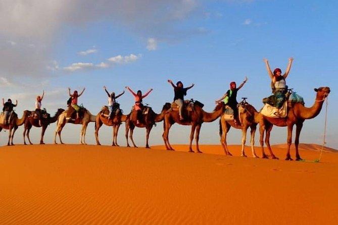 1 overnight Camel Trek in Merzouga Desert