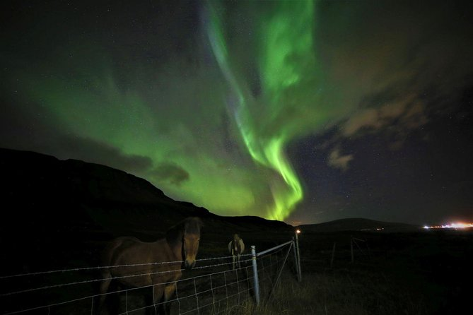 Northen Light tour on ATV/Quad