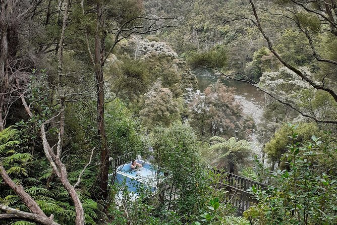 Mangatutu Hot Springs & Balls Clearing Nature Reserve photo 1
