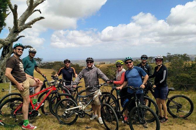 McLaren Vale Wine Tour by Bike
