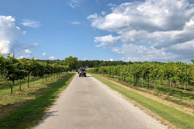 Tennessee Hampshire Winery Tour 4 Hour Guided SXS Ride