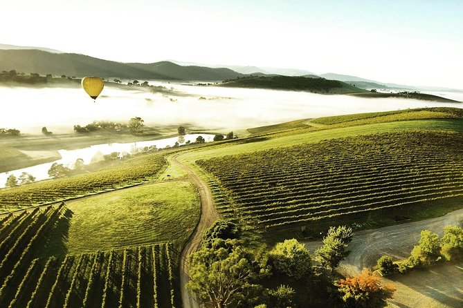 [PRIVATE TOUR] Mount Dandenong and Yarra Valley Winery Tour
