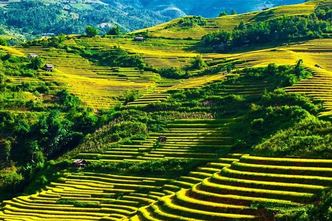 Ha Giang Discovery 2 Day 1 Night Tour From Ha Giang City photo 11