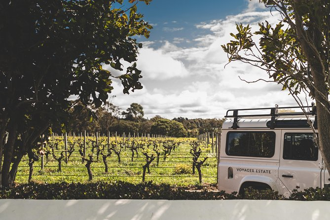 Head into the vineyards in our Land Rover Defender
