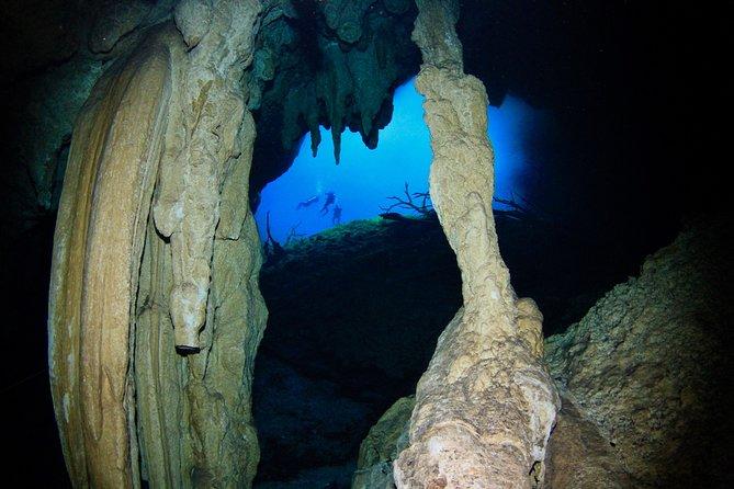 Dive 2 Cenotes
