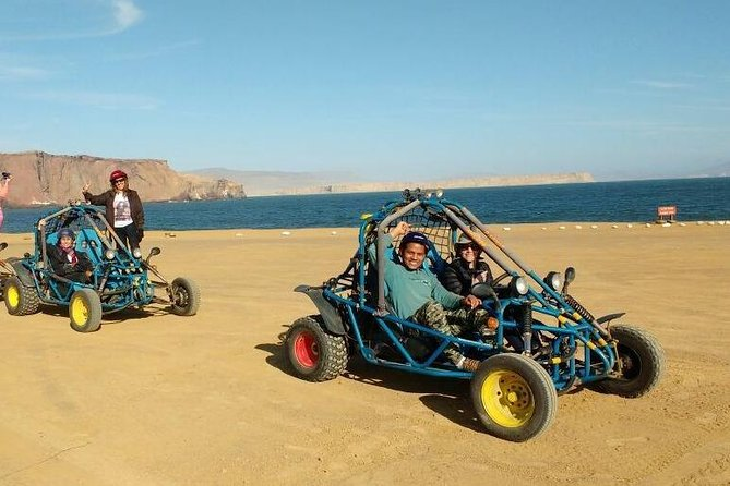 Minibuggy Ride in the National Park