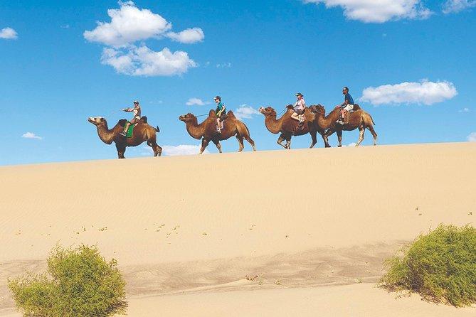 Discover True Mongolia Tour