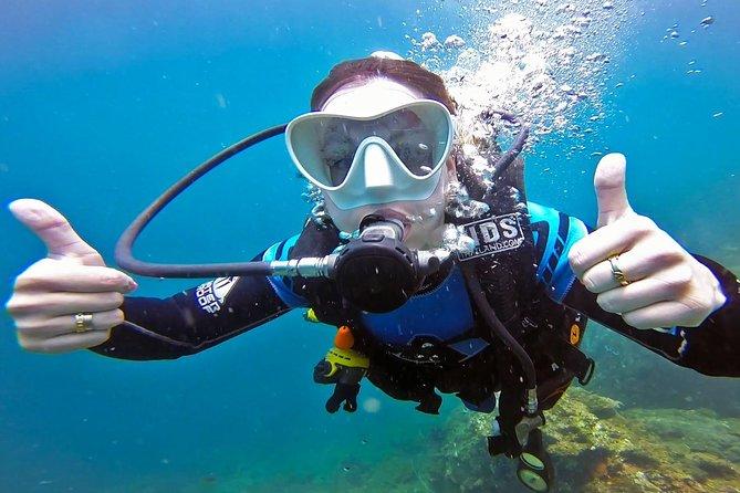 Scuba Dive Trip to Sail Rock from Koh Phangan (Certified Divers)