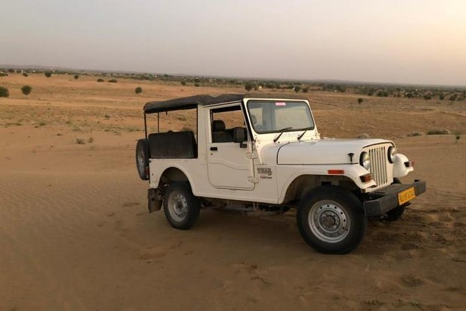 Desert Jeep Safari Half -Day Tour In Jodhpur