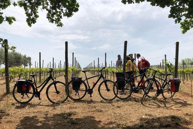 """Abruzzo Divino"" Vineyards, Culture and Wines: SELF-GUIDED cycling weekend"