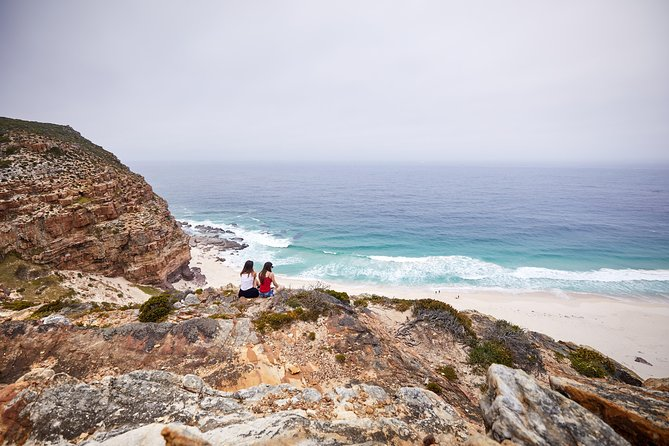 Cape Peninsula Small-Group Full-Day Tour with Lunch
