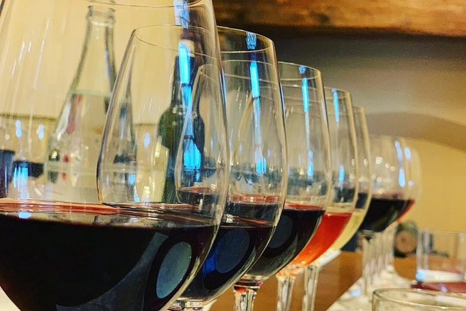 Guided Winery Tour with Tasting & Light Lunch in Bolgheri