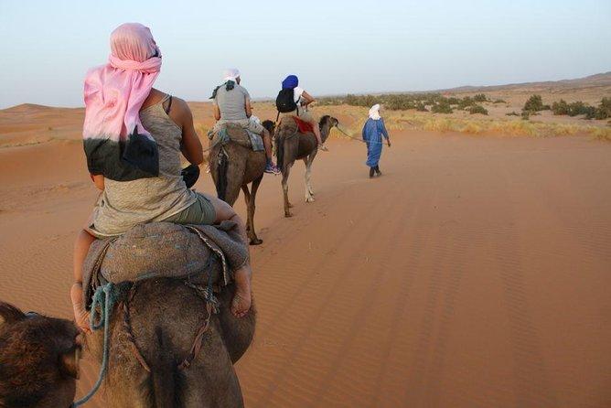2Day Desert Safari to Zagora from Marrakech Including Camel Trek and Desert Camp