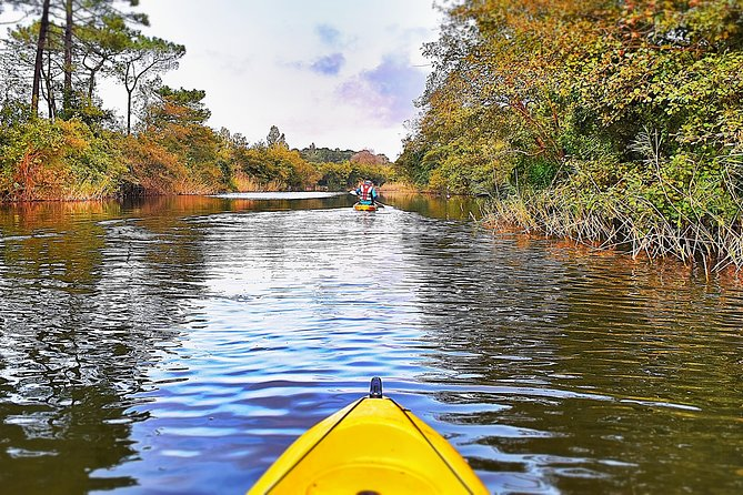 Cycling And Kayaking At Colchis National Park