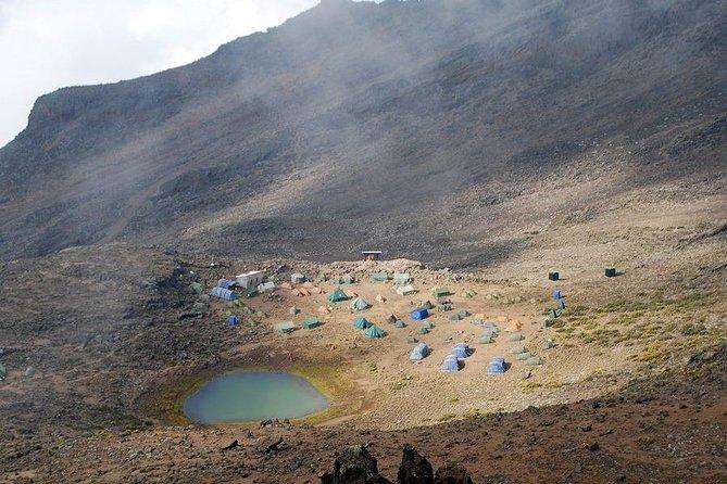 Private 7-Day Kilimanjaro Climb via Rongai Route