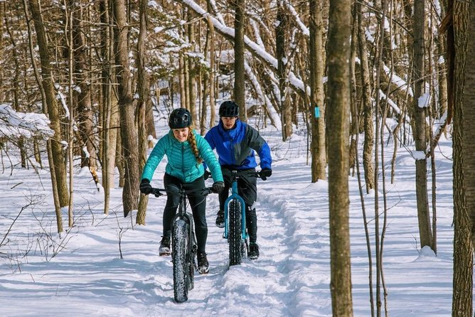 Guided electric fat bike tours photo 1