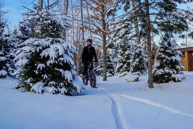 Guided electric fat bike tours photo 2
