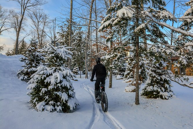 Guided electric fat bike tours photo 4