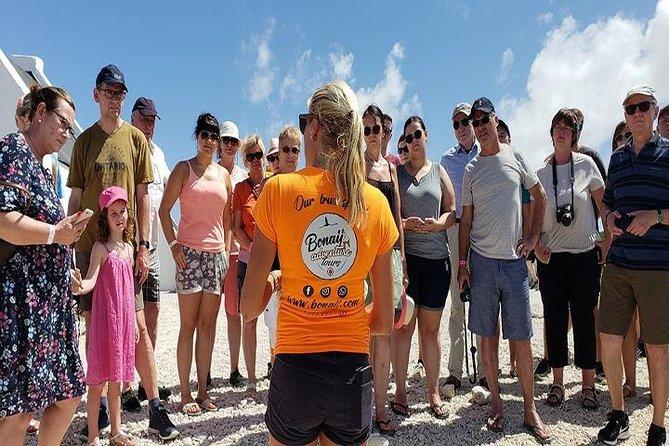 Bonaire Essentials Island Tour