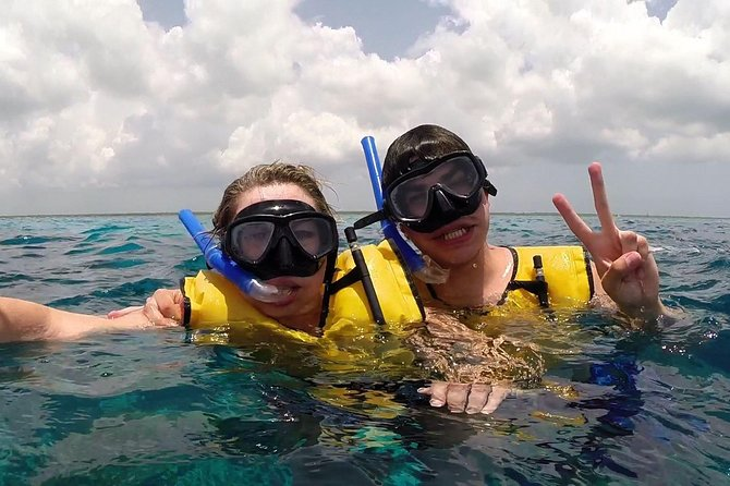 Live a UNIQUE experience in COZUMEL SNORKEL PLUS at the Caribbean Sea photo 4