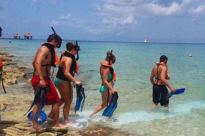 Live a UNIQUE experience in COZUMEL SNORKEL PLUS at the Caribbean Sea photo 19