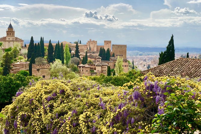The Alhambra and Generalife - private tour photo 6
