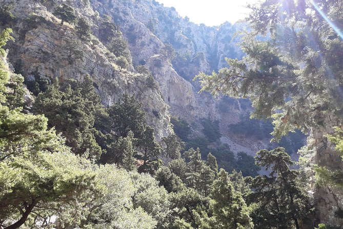 Hike Imbros gorge and visit a winery or Frangokastello beach photo 7