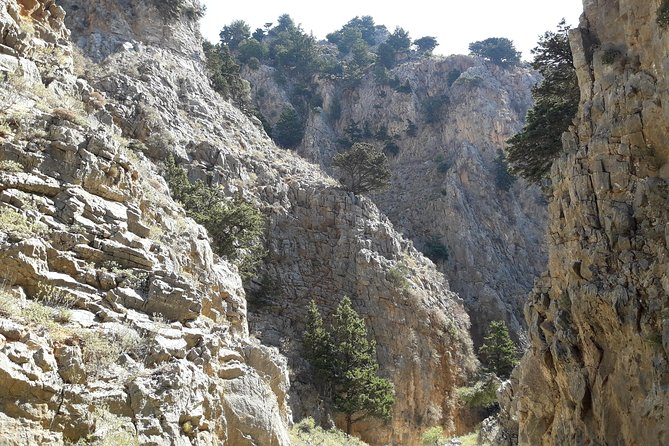 Hike Imbros gorge and visit a winery or Frangokastello beach photo 3