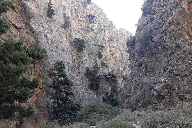 Hike Imbros gorge and visit a winery or Frangokastello beach photo 1