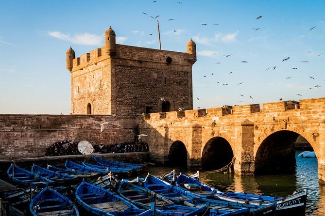 One Day Trip from Marrakech, Discovering Essaouira