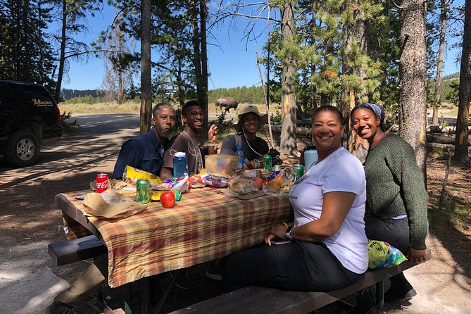 PRIVATE TOUR: The Best of Yellowstone National Park. Picnic lunch included! photo 38
