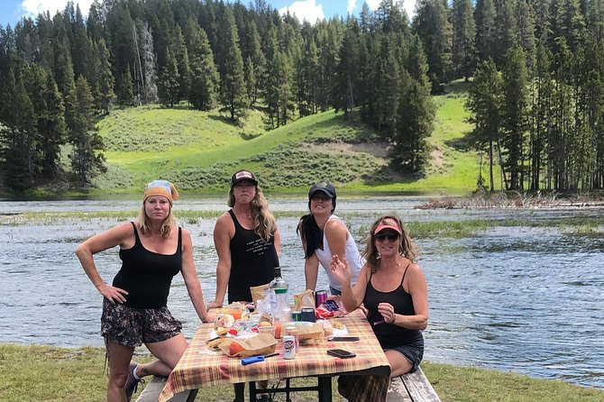 PRIVATE TOUR: The Best of Yellowstone National Park. Picnic lunch included! photo 16