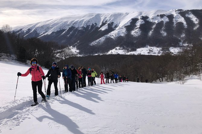 Snowshoe excursion to the Bosco di Sant'Antonio - Abruzzo