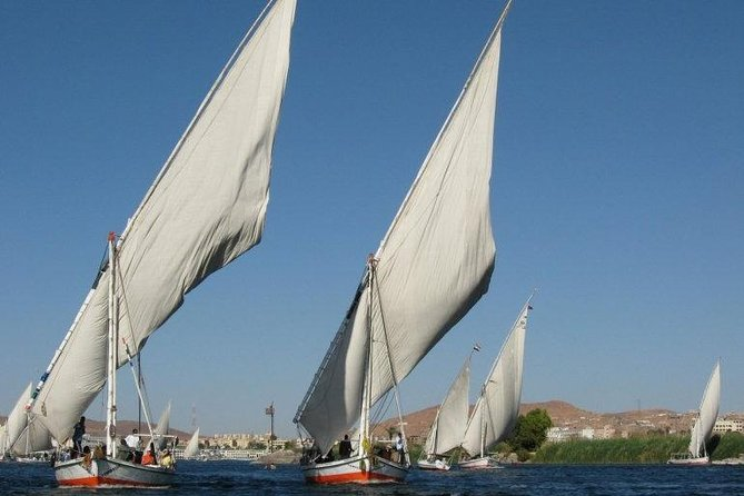 Aswan Excursion in Felucca