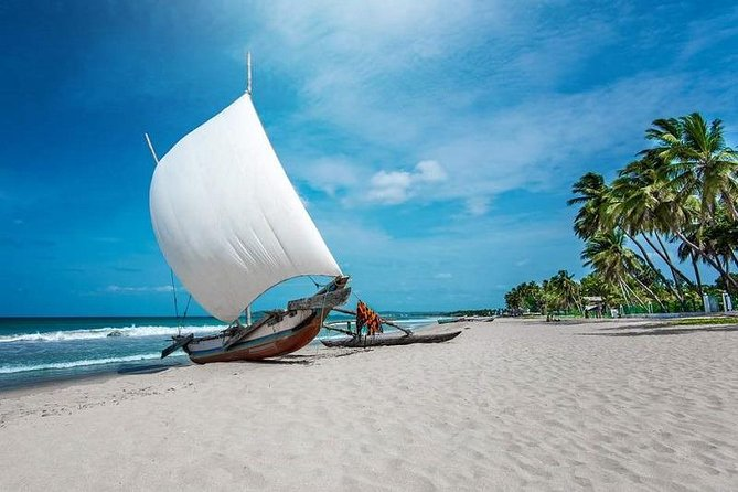 Negombo City And Fishing Village Private Day Tour From Colombo