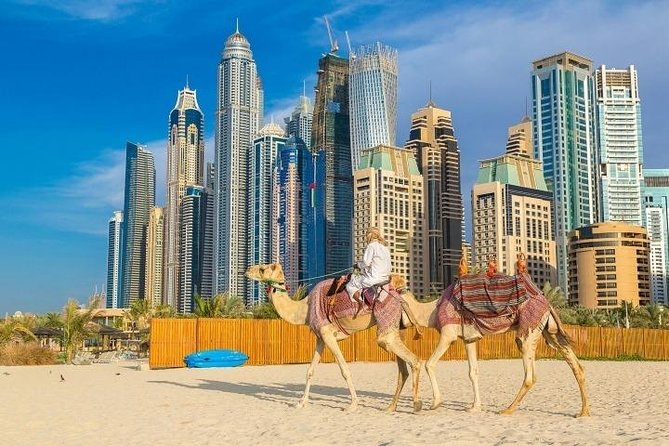 Full Day Private Dubai and Abu Dhabi City Tour   Traditional to Modern