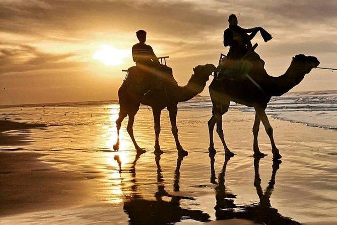 6Days 5Night Romantic Morocco Honeymoon Tour Private Activities Around Marrakech