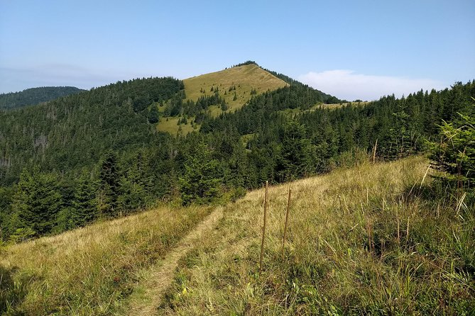 Hiking in Carpathian Mountains - Guided Walking Nature Tour.