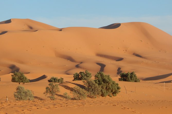 3 Days 2 Nights Private Tour from Marrakech to Fes via Sahara Desert photo 6