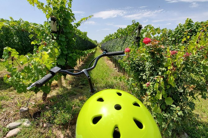 Electric bike self-guided tour at malbec region (Luján de Cuyo, Mendoza