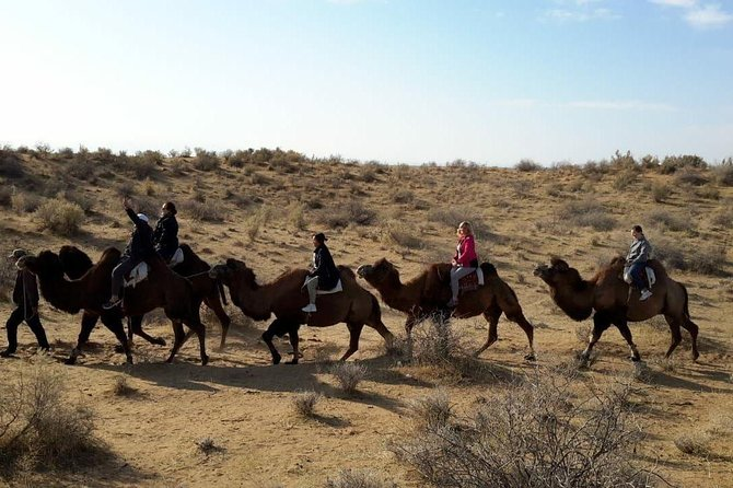 Exotic Tour and Camel Riding