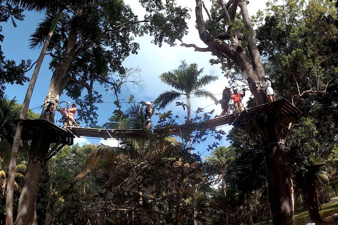 Zip Line over the Dunns River Falls