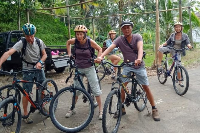 Ubud : Best of Mountain Cycling & Waterfall Tour - Free WiFi